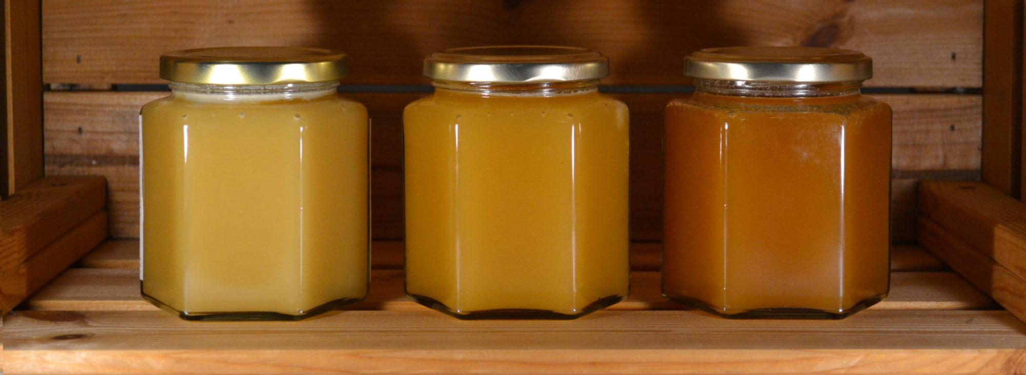 Samuel Tryggers lokala honung